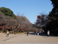 h28_tokyo_day2_1_019
